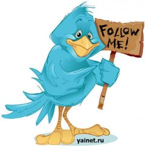 Количество фолловеров в twitter